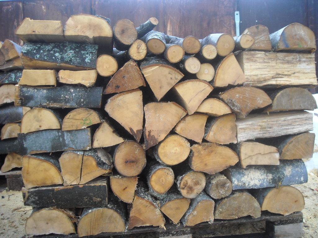 """ОП """"Земеделие, гори и водни ресурси"""" обявява открит конкурс за """"Добив на дървесина – Извеждане на сеч, разкройване на сортименти по БДС, извоз до временен склад и рампиране на отсечена дървесина от Обект № 1808:"""